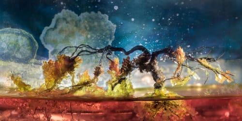 Liz Hickok - Murals and Art
