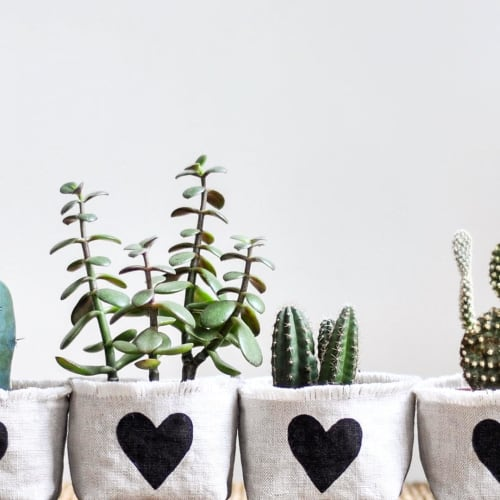 Vases & Vessels by Gray Green Goods seen at Private Residence, Lafayette - Black Heart Linen Planter