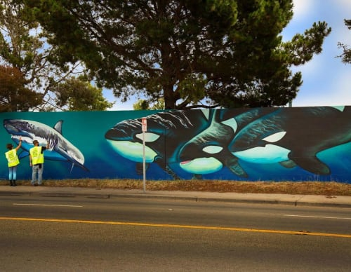 Street Murals by Taylor Reinhold seen at Bay View Elementary School, Santa Cruz - Street Mural