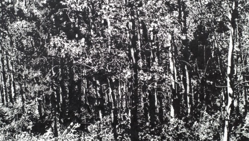 James Chronister - Art