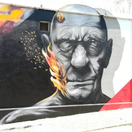 """Street Murals by Luis Baldini seen at Private Residence, Seixal - """"Serenity in Chaos"""""""