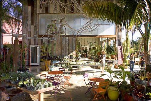 Flora Grubb Gardens, Stores, Interior Design