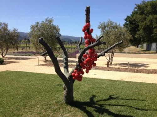 Sculptures by Anya Gallaccio seen at HALL Wines, Saint Helena - Because Nothing Has Changed