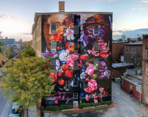 Street Murals by Gaia seen at Kingston, NY, Kingston - Pronkstilleven