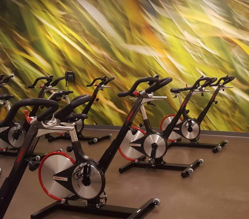 Photography by Rica Belna seen at NorthBay HealthSpring Fitness, Vacaville - Large-Format Grasses for Group Cycle