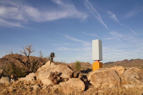 Public Sculptures by Luckey Remington seen at Joshua Tree Hills, Joshua Tree - Ladder