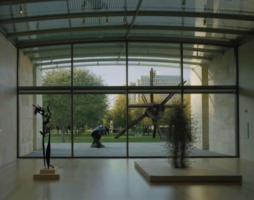 Nasher Sculpture Center, Art Galleries, Interior Design