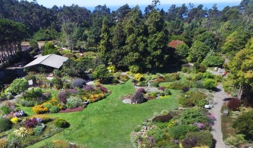 Mendocino Coast Botanical Gardens, Urban Canvases, Interior Design