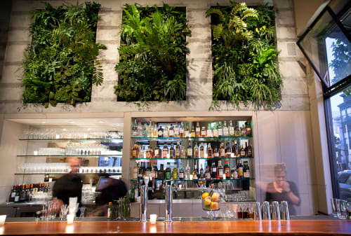 Plants & Landscape by Flora Grubb Gardens seen at Maven, San Francisco - Living Wall