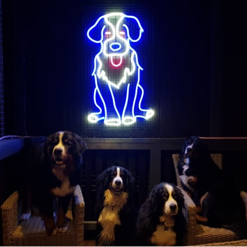 Lighting by Carla O'Brien seen at Private Residence, Kew East - Neo the Bernese Mountain Dog