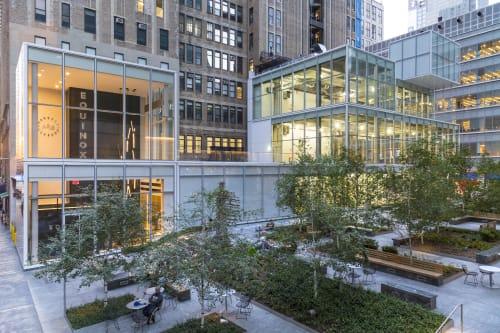 The Cubes, Urban Canvases, Interior Design