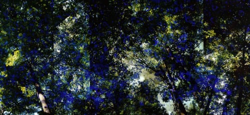 Doug Fogelson - Murals and Art
