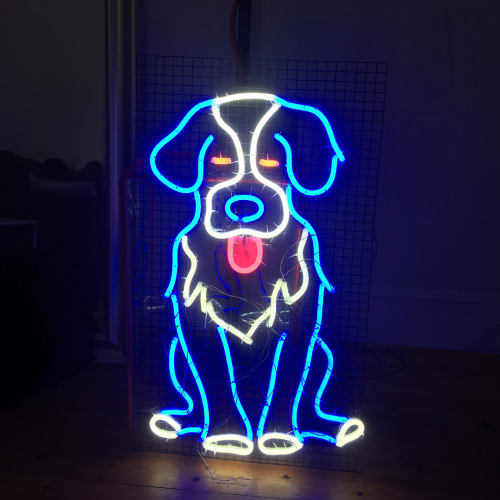 Lighting by Carla O'Brien at Private Residence, Kew East - Neo the Bernese Mountain Dog