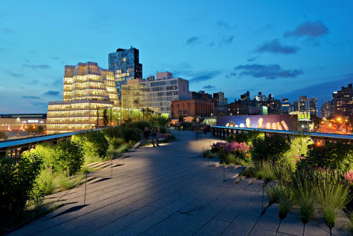 The High Line Park, Urban Canvases, Interior Design