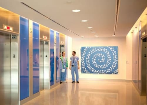 Art & Wall Decor by Susan Graham seen at Johns Hopkins Hospital, Sheikh Zayed Tower, Baltimore - Toile Garden