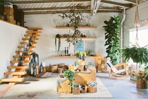 Hollyflora - Plants & Landscape and Floral & Garden