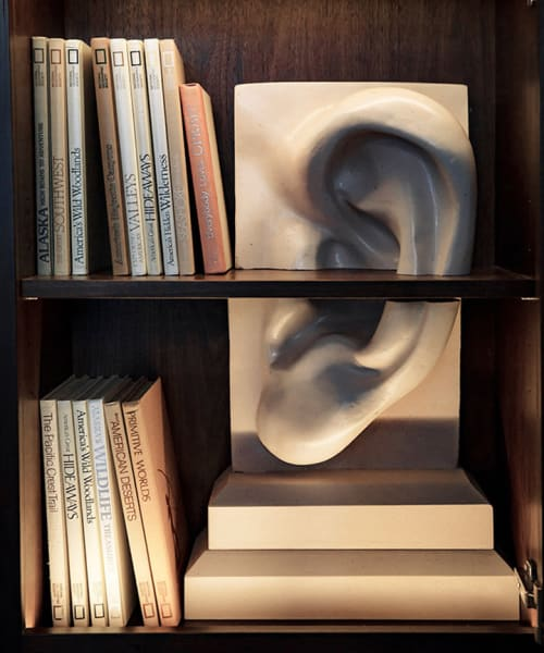 Sculptures by We Came In Peace seen at The Vine, New York - Ear Sensory Bookend