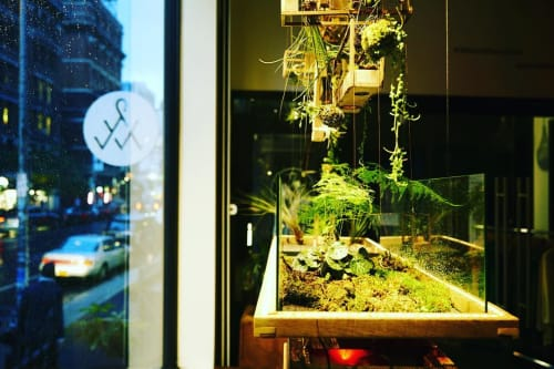 Plants & Flowers by Plant-In City seen at Alternative Apparel, New York - Hanging Garden