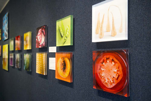 "Photography by Paulette Phlipot seen at Lipton Fine Arts, Ketchum - ""Unprocessed"" Exhibit"
