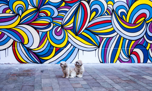 Murals by KEF! at Le M.U.R Mulhouse, Mulhouse - Le M.U.R Mulhouse Mural