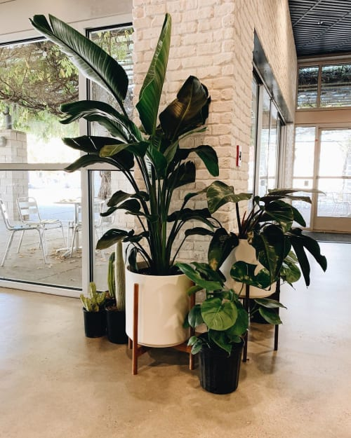 Vases & Vessels by LBE Design seen at SoPo Roasting and Brewing Co., Albuquerque - The Fourteen w/ Stand Planter