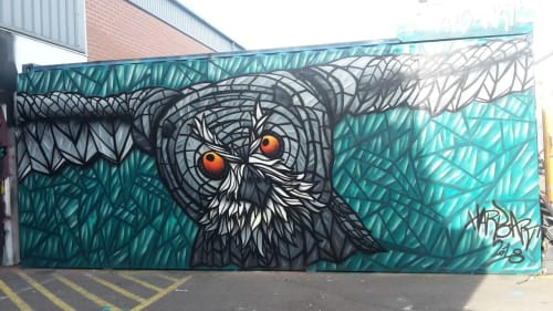 Street Murals by HarpoArt seen at Coventry, Coventry - Flying owl, green/chromo