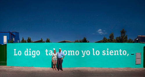 Street Murals by +Boa Mistura seen at Madrid, Madrid - El alma no tiene color
