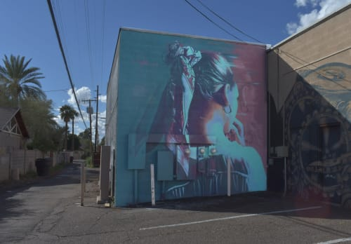 Street Murals by Clyde seen at 3rd Avenue & West McDowell Road, Phoenix - Wherever You Go