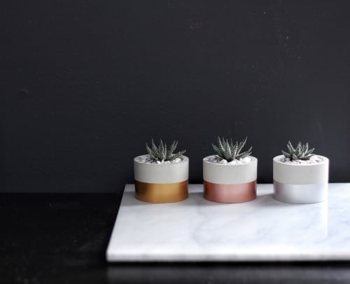 """Plants & Flowers by Mind The Minimal seen at """"Private Residence - Vancouver, BC"""", Vancouver - Cylinder Concrete Planter"""