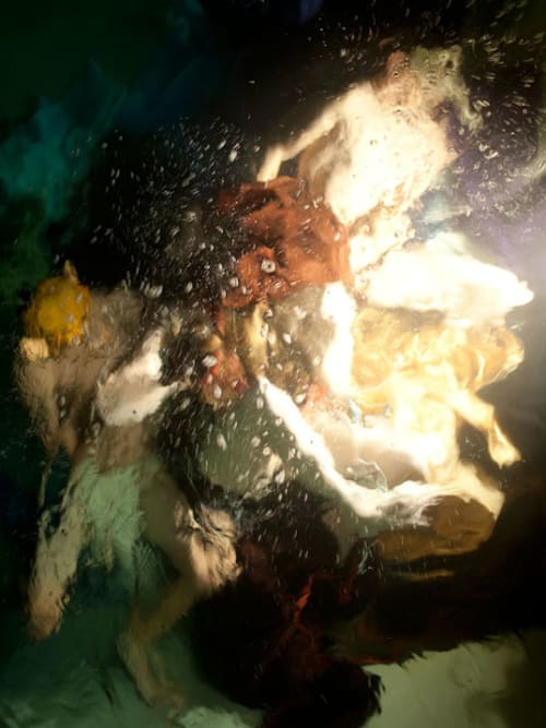 """Photography by Christy Lee Rogers at Private Residence - """"The Goliards"""" Underwater Photograph"""