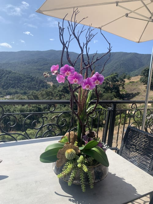 Floral Arrangements by Fleurina Designs seen at Private Residence, Los Gatos - Blissful orchid arrangement