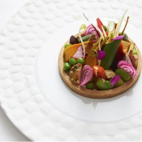Ceramic Plates by Mieke Cuppen seen at Les Semailles - Restaurant Gastronomique Strasbourg La Wantzenau, La Wantzenau - Texture plate Crocodilo
