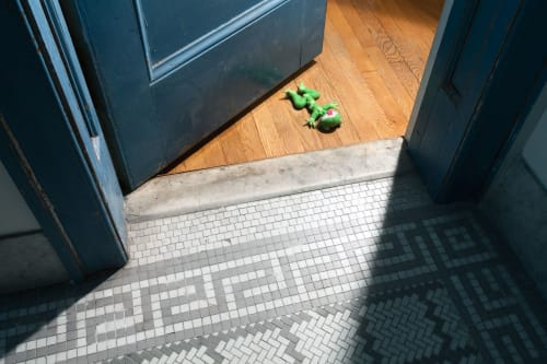 Photography by Jeanette May seen at Private Residence, New York - Morbidity & Mortality: Frog