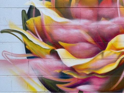 Murals by Kathryn Crawford Art seen at Patton Avenue, Asheville - Abstracted Rose Mural