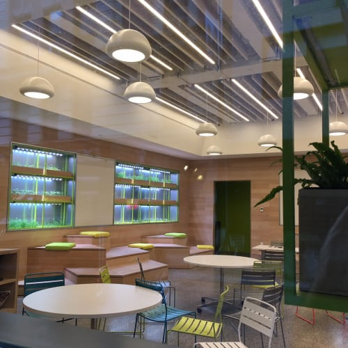 Pendants by CP Lighting at Blue School, New York - Chroma Pendant