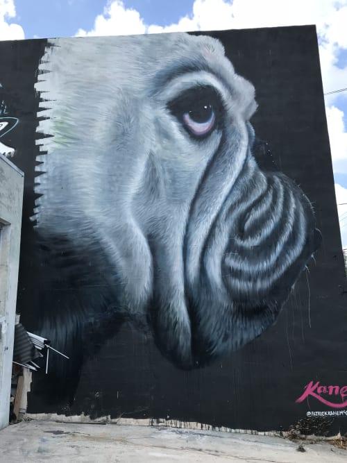 Patrick Kane McGregor - Art and Street Murals