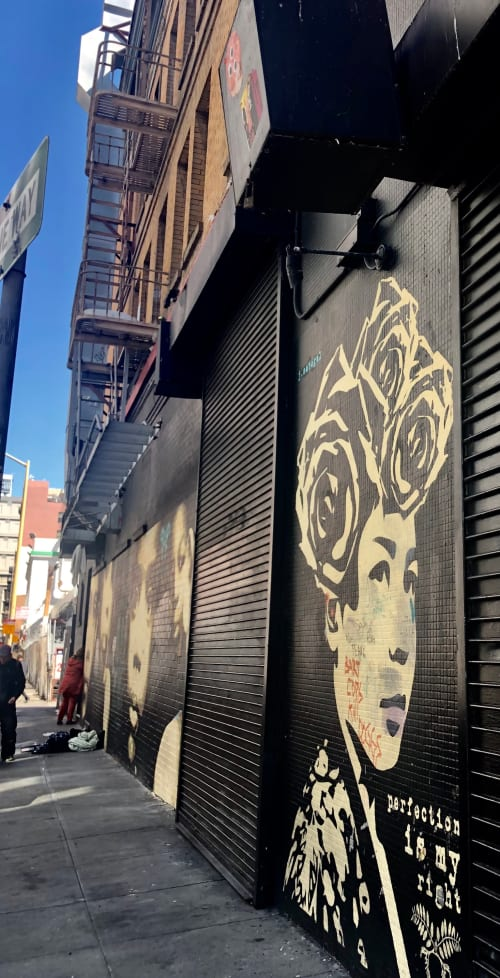 Street Murals by Jessica Sabogal seen at Stevenson Street & 6th Street, San Francisco - Perfection Is My Right