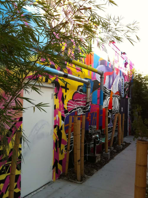 Street Murals by assume vivid astro focus at Wynwood, Miami, Miami - The Lightbox