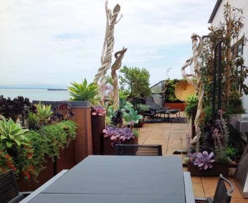Plants & Landscape by Living Green Design seen at Private Residence, San Francisco - San Francisco Penthouse Terrace Garden