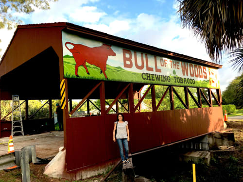 Murals by Murals by Georgeta (Fondos) seen at Coral Springs Covered Bridge, Coral Springs - Mural