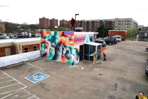Street Murals by Nathan Brown seen at Nashville, Nashville - Elliston Garage murals