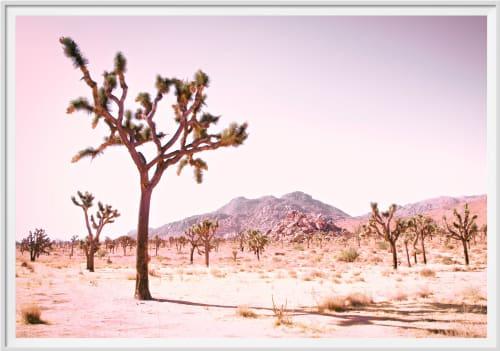 Photography by Kristin  Hart  Studios seen at Joshua Tree National Park - CALIFORNIA DESERT - ROSE