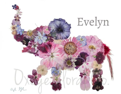 Paintings by Oxeye Floral Co seen at Chantelle Lourens' Home - Evelyn the Elephants