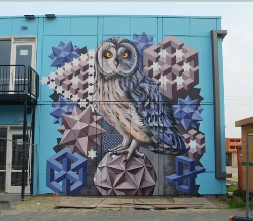 Murals by Michel Velt seen at Groningen, Groningen - Athens owl