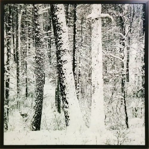 Art & Wall Decor by James Chronister seen at Zuckerberg San Francisco General Hospital and Trauma Center, San Francisco - Large Snowy Forest