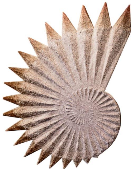 Rugs by Ferreira de Sá seen at Private Residence, Vila Nova de Gaia - Seashell Rug