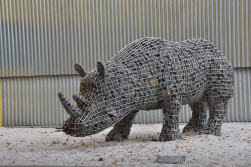 Public Sculptures by Roger Gaudreau seen at University of Tasmania, Inveresk Campus, Launceston - The Migration of the Rhinoceros  «Mavis»
