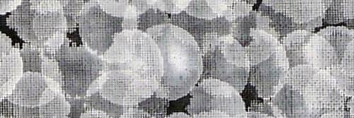Ana Velez - Murals and Art