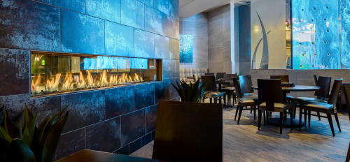 Fireplaces by European Home seen at Kona Grill, Minnetonka - Tenore 240 Gas Fireplace