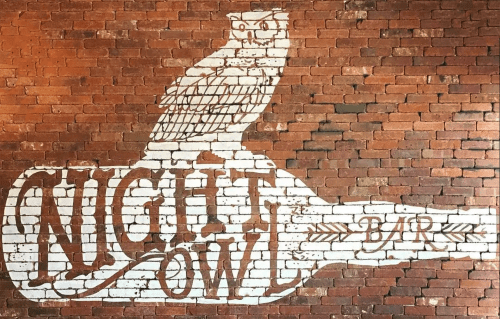 "Murals by Avery Orendorf seen at Night Owl, Austin - ""Nigh Owl"" Sign Painting"